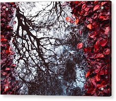 Autumn Reflections II Acrylic Print by Artecco Fine Art Photography