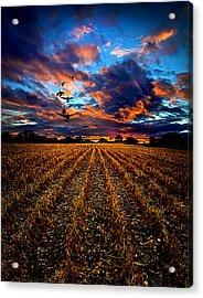 Autumn Rising Acrylic Print