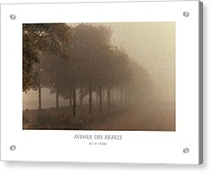 Acrylic Print featuring the digital art Avenue Des Arbres by Julian Perry