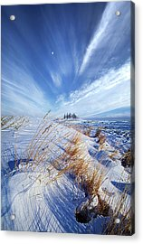 Acrylic Print featuring the photograph Azure by Phil Koch