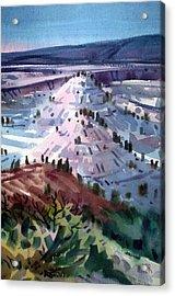 Badlands South Dakota Acrylic Print by Donald Maier