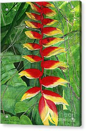 Acrylic Print featuring the painting Balinese Heliconia Rostrata by Melly Terpening