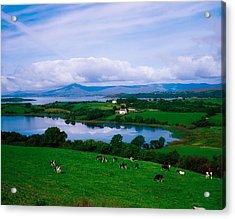 Bantry Bay, Co Cork, Ireland Acrylic Print