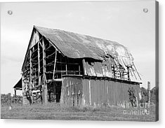 Barn In Kentucky No 75 Acrylic Print by Dwight Cook