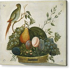 Basket Of Fruit With Parrot Acrylic Print by A M  Randall