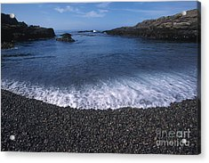 Beach At Point Lobos Acrylic Print by Stan and Anne Foster