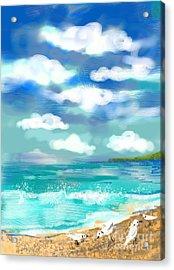 Beach Birds Acrylic Print by Elaine Lanoue