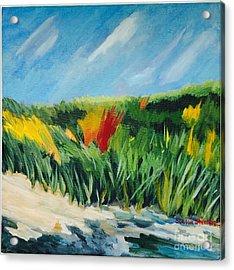 Beach Grass Acrylic Print by Stella Sherman