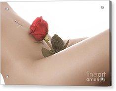 Beautiful Female Body Acrylic Print by Oleksiy Maksymenko