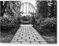 Beautiful Pathway Along The Rose Garden Of The Huntington Librar Acrylic Print by Jamie Pham