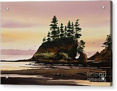 Acrylic Print featuring the painting Beautiful Shore by James Williamson