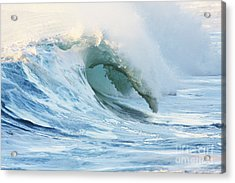 Beautiful Wave Breaking Acrylic Print by Vince Cavataio - Printscapes