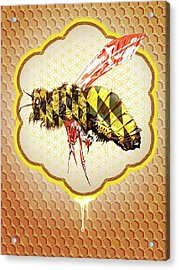 Beemore Acrylic Print by Will Shanklin