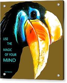 Believe Toucan Acrylic Print