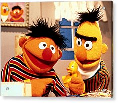 Bert And Ernie Acrylic Print