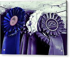 Best In Show Blue Acrylic Print by JAMART Photography