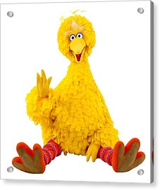 Big Bird Acrylic Print