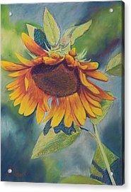 Big Sunflower Acrylic Print by Billie Colson