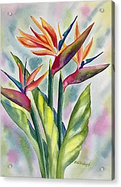 Bird Of Paradise Flowers Acrylic Print