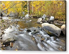 Bishop Creek In The Fall Acrylic Print by Dung Ma