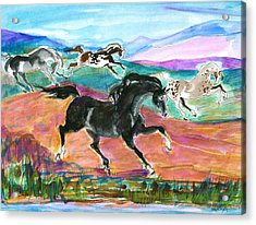 Black Pony Acrylic Print by Mary Armstrong