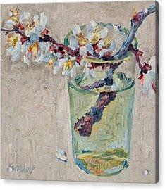 Blossoming Branch In A Glass Acrylic Print by Vitali Komarov