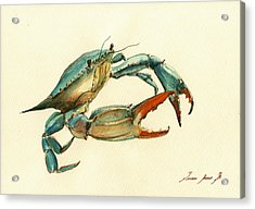 Blue Crab Painting Acrylic Print