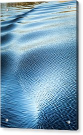 Acrylic Print featuring the photograph Blue On Blue by Karen Wiles
