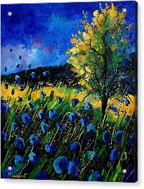 Blue Poppies  Acrylic Print by Pol Ledent