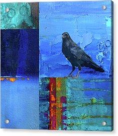 Blue Raven Acrylic Print by Nancy Merkle