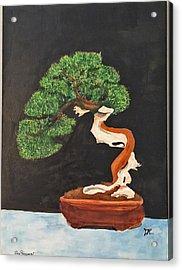 Bonsai-1 Acrylic Print