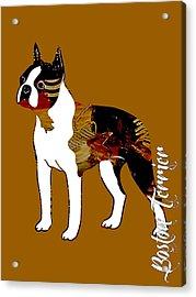 Boston Terrier Collection Acrylic Print