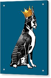 Boxer With Crown Collection Acrylic Print by Marvin Blaine