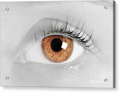 Brown Eye Of A Young Woman Acrylic Print by Michal Bednarek