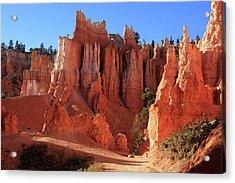 Bryce Canyon National Park, Utah Acrylic Print