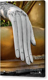 Buddhas Hand Acrylic Print by Adrian Evans