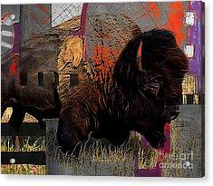 Buffalo Collection Acrylic Print by Marvin Blaine
