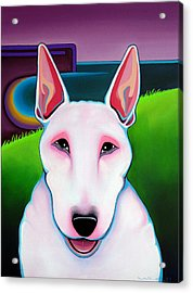 Acrylic Print featuring the painting Bull Terrier by Leanne WILKES