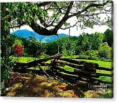 Cade's Cove Split Rail Acrylic Print by Julie Dant