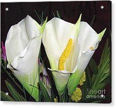 Calla Lilies Acrylic Print by Merton Allen