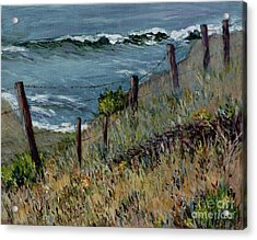 Cambria Coast Acrylic Print