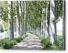Canal Du Midi Acrylic Print by Cendrine Marrouat