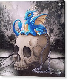 Captive Dragon On An Old Skull Acrylic Print