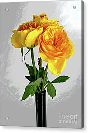 Captured Yellow Roses Acrylic Print