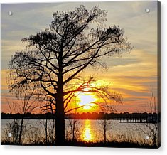 Carolina Sunset Acrylic Print by Victor Montgomery