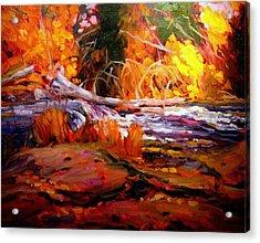Cascade Acrylic Print by Brian Simons