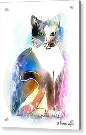 Cat Of Many Colors Acrylic Print by Arline Wagner