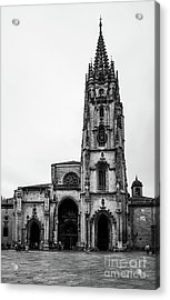Cathedral Acrylic Print