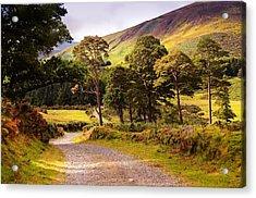 Celtic Spirit. Wicklow Mountains. Ireland Acrylic Print by Jenny Rainbow