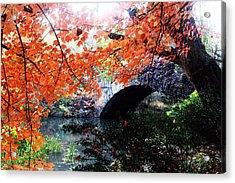 Central Park New York City Acrylic Print by Mark Ashkenazi